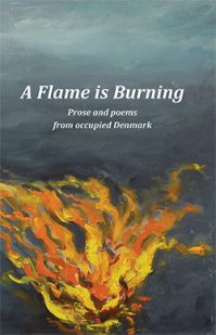 A Flame is Burning Book Jacket